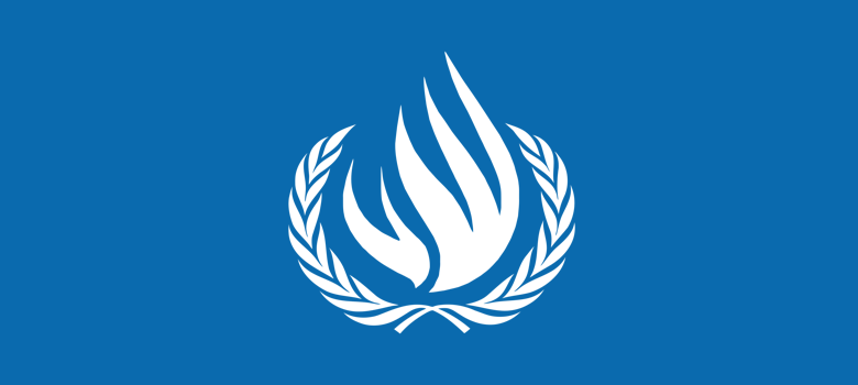 U.N. Declares Internet Access a Human Right